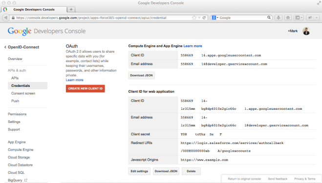 7. Google Developers Console